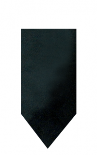 hire_neckwear_satin_black3