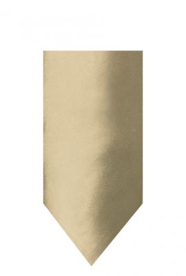 hire_neckwear_satin_champagne3