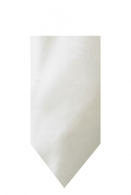 hire_neckwear_satin_ivory3