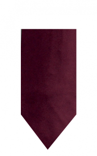 hire_neckwear_satin_plum3