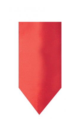 hire_neckwear_satin_red3