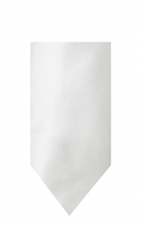 hire_neckwear_satin_white3
